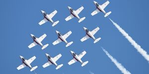 Canadian Forces Snowbirds-Kunstflugteam.